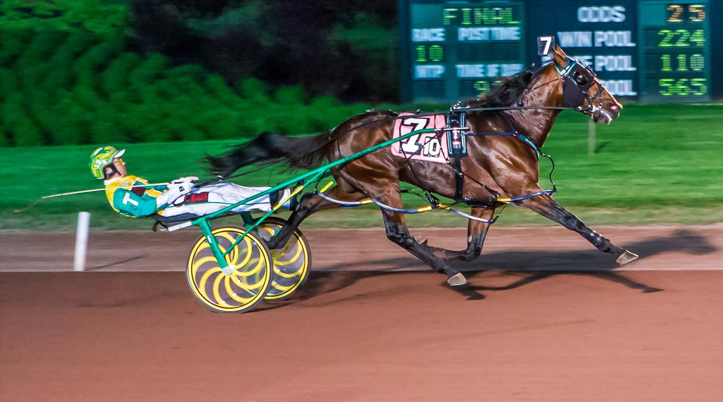 live-action shot of harness racing