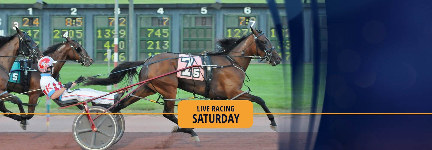 Live Harness Racing - Saturday