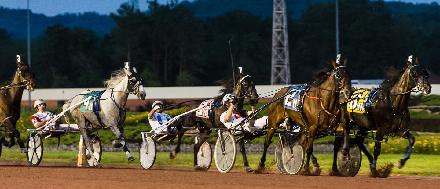 Night time Harness Horse Race