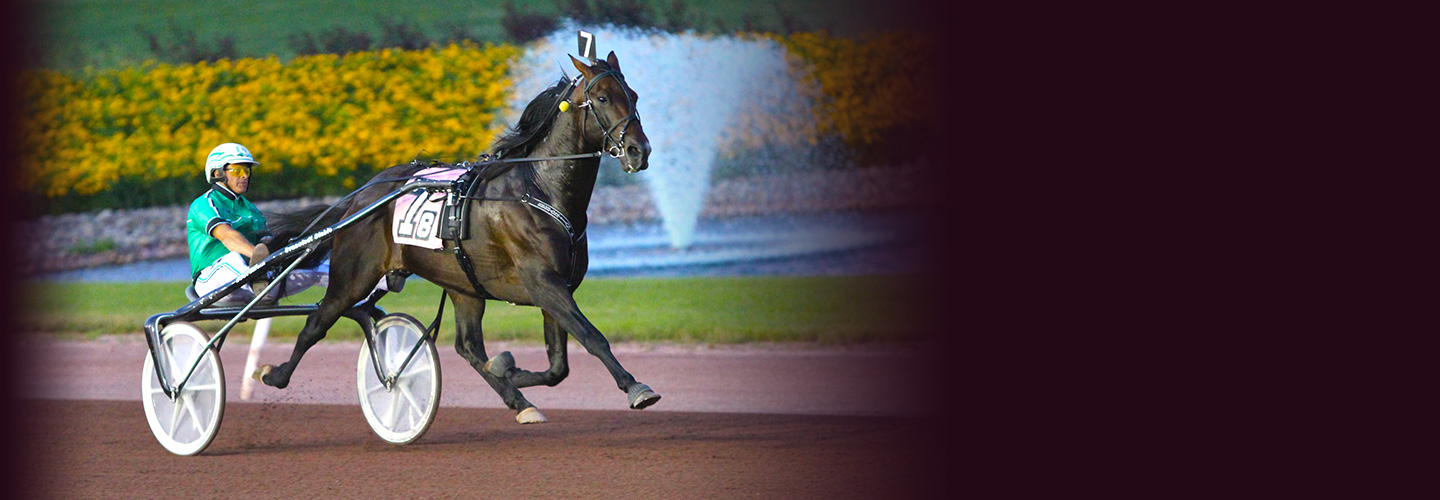 Live Harness Racing - Monday