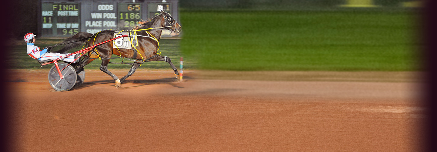 Live Harness Racing - Tuesday